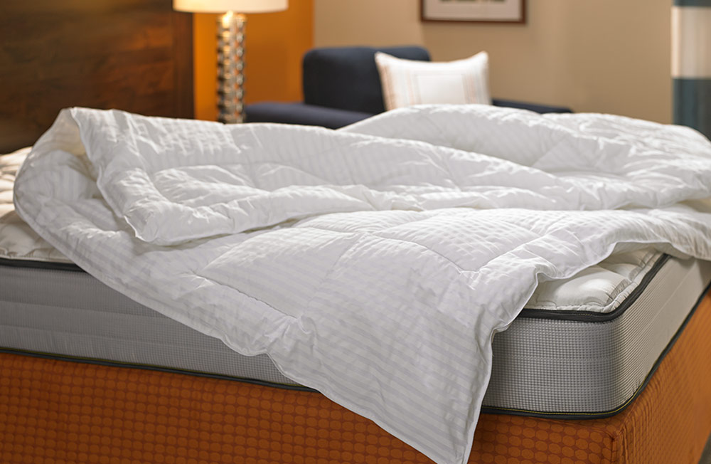 Throw Pillows Uncovered : Down Alternative Blanket - Shop Fairfield Inn & Suites Hotel Store