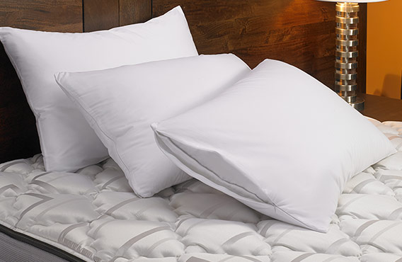 Pillow Protector Fairfield Hotel Store